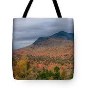 Tapestry Of Fall Colors Tote Bag