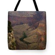 The Awe Of Nature Tote Bag