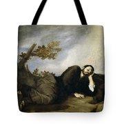 Jacob's Dream Tote Bag