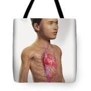 The Cardiovascular System Pre-adolescent Tote Bag