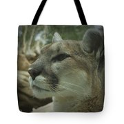 The Cougar 3 Tote Bag by Ernie Echols