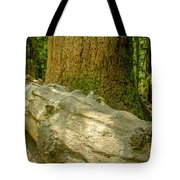 The Fallen Collection 6 Tote Bag