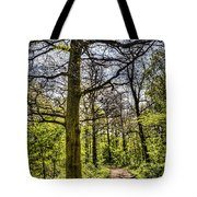 The Forest Path Tote Bag by David Pyatt