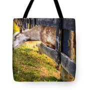 The Grass Is Greener... Tote Bag