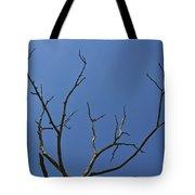 The Lightning Tree Tote Bag