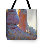 The Medicine Robe Tote Bag