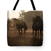 The Misty Morning Tote Bag