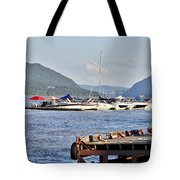 The Newburgh Water Front Tote Bag