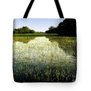 The Pantanal Tote Bag