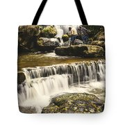 The Photographer's Quest V Tote Bag