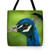 The Regal Peacock Tote Bag