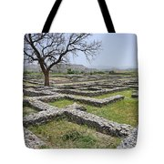 The Ruins Of Sirkap City At Taxila In Pakistan Tote Bag