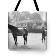The Stallion Tote Bag