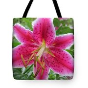 The Stargazer Tote Bag