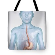 The Stomach Child Tote Bag