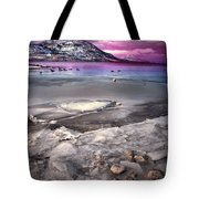 The Thaw Tote Bag by Tara Turner