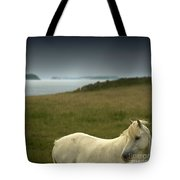 The Welsh Pony  Tote Bag
