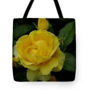 Yellow  Rose Of Summer Tote Bag