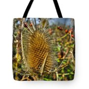 Thistle On Sunny Autumn Day Tote Bag