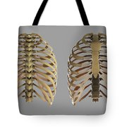 Thoracic Cage Tote Bag