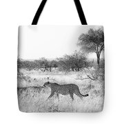 Three Cheetahs At Mashatu Tote Bag