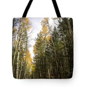 A Path Through The Woods  Tote Bag