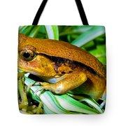 Tomato Frog Tote Bag