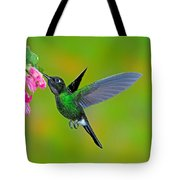 Tourmaline Sunangel Hummingbird Tote Bag