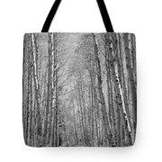 Trees Along A Road, Log Cabin Gold Tote Bag