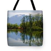 Trees And Lake Tote Bag