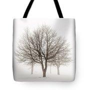 Trees In Winter Fog Tote Bag by Elena Elisseeva