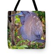 Tricolored Heron Egretta Tricolor Tote Bag