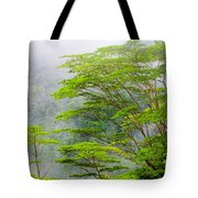 Tropical Forest, Seychelles Tote Bag