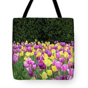 Tulip Flowers In A Garden, Chicago Tote Bag