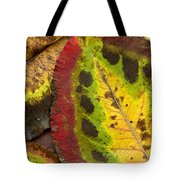 Turning Leaves Tote Bag