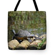 Turtle On A Raft Tote Bag