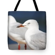 Two Boardwalk Gulls Tote Bag