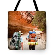 Two Friends Hiking Through The Grand Tote Bag