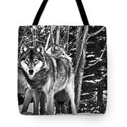 Two Gray Wolves Tote Bag