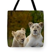 Two White Lions Tote Bag