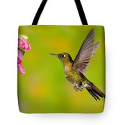 Tyrian Metaltail Hummingbird Tote Bag