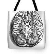 Vesalius: Brain Tote Bag