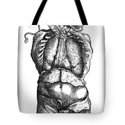 Vesalius: Thoracic Cavity Tote Bag