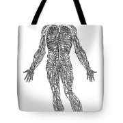 Vesalius: Venous System Tote Bag