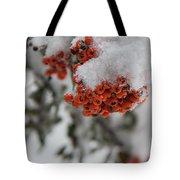 Viburnum Shrub In Snow Tote Bag