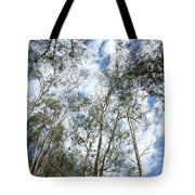 View Of Towering Trees Tote Bag