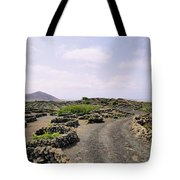 Vineyard On Lanzarote Tote Bag
