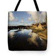 Visions Of Nature 6 Tote Bag