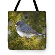 Waiting Out Winter Tote Bag