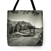 walking in the Alps - bw Tote Bag